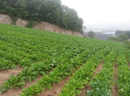 농업회사법인(주)펀치볼